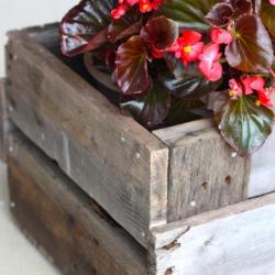 DIY | Pallet Planter Box