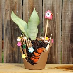 Fairy Garden Flower Pot DIY