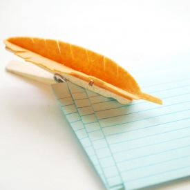 Feather Clothespin Clips