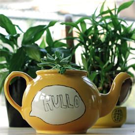 Speech Bubble Teapot Planter