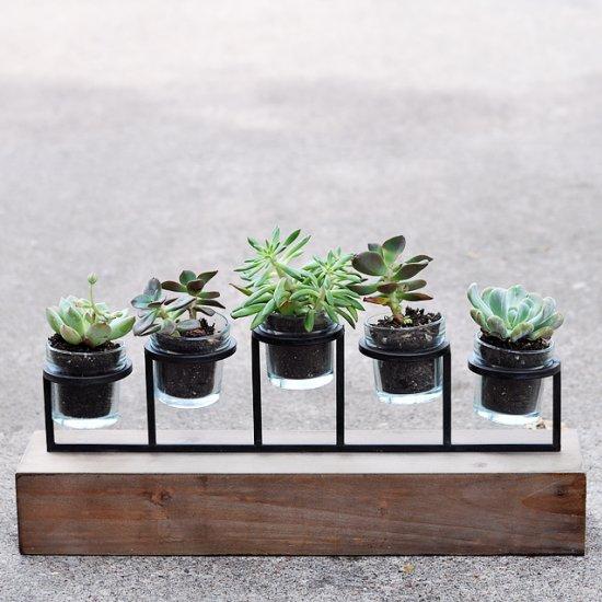 Succulent Planter Tutorial