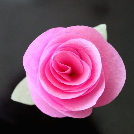 Making a Paper Rose