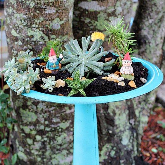 Bird Bath Succulent Planter