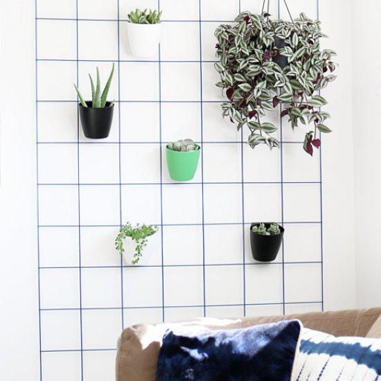 DIY Hanging Plant Wall