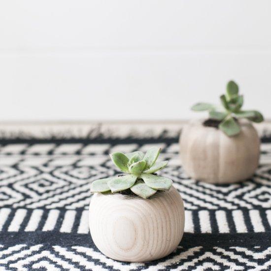 Mini Wooden Succulent Planter DIY